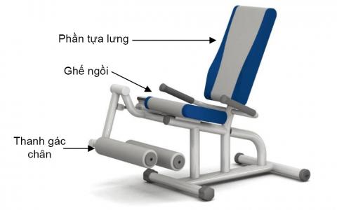 Ghế tập gập chân/ duỗi chân bằng thuỷ lực HE-09